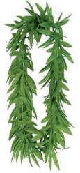 Everything looks beteer when you add a Tropical Fern Leaf Lei!