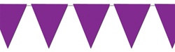 Purple Indoor/Outdoor Pennant Banner, 12 ft