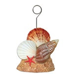 Seashell Photo/Balloon Holder