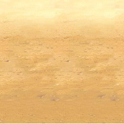Desert Sand Backdrop PartyCheap