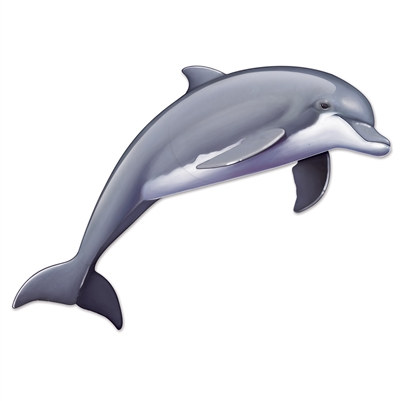 Jointed Dolphin