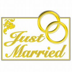 Glittered Just Married Sign