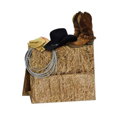 3 d western centerpiece partycheap for Cheap western decor