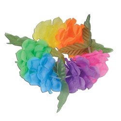 Multicolor Silk N Petals Big Island Headband