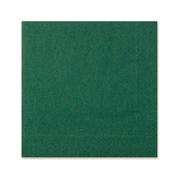 Dark Green Napkins (20/pkg)