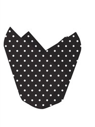 Black Polka Dotted Baking Cups (12/pkg)