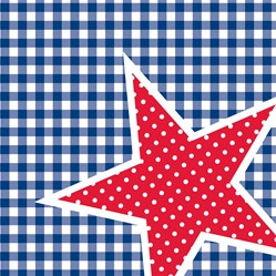 Patriotic Picnic Lunch Napkins