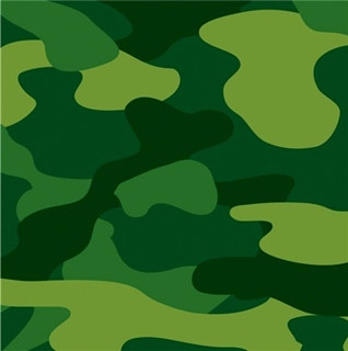 Camo Lunch Napkins (16/pkg)