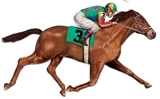 Celebrate horse racing at it's finest with our classic race themed decoratins!