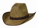 Western Hat with Brown Trim