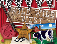 Western Party Supplies & Decorations