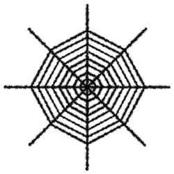black giant shimmering spider web
