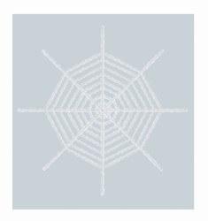 white shimmering spidr web