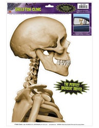 skeleton cling