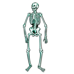 Jointed Skeleton 55 inch