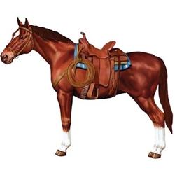 hointed horse