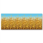 Cornstalks Backdrop