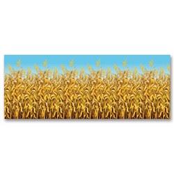 cornstalks backdrop
